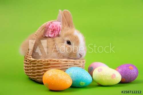 Easter Wallpaper 1
