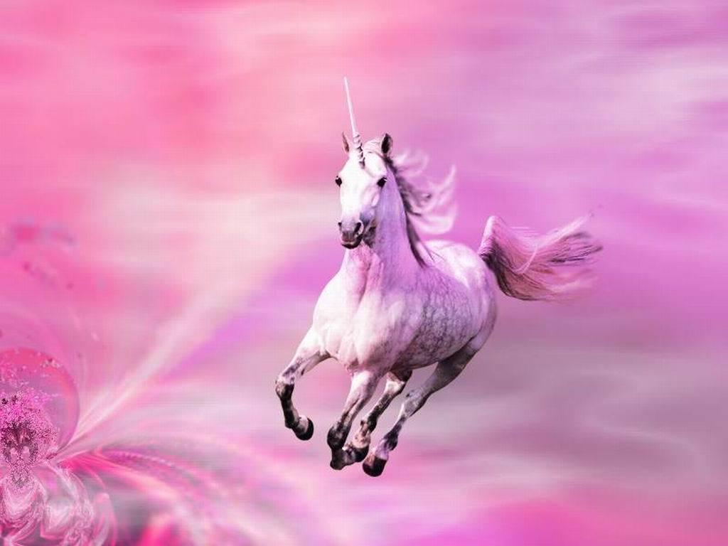 Unicorn wallpaper 3