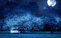 Moon and stars wallpaper 39
