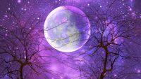 Moon and stars wallpaper 27