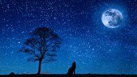 Moon and stars wallpaper 48
