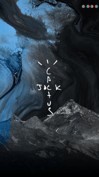 Cactus Jack Wallpaper 14