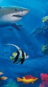 Underwater Wallpaper 21