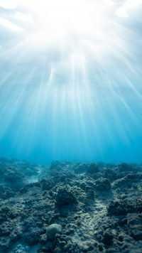 Underwater Wallpaper 25