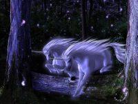 Unicorn wallpaper 19