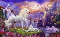 Unicorn wallpaper 16