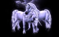 Unicorn wallpaper 14