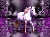 Unicorn wallpaper 37