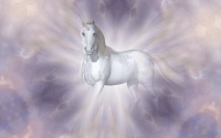 Unicorn wallpaper 32