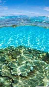 Underwater Wallpaper 9
