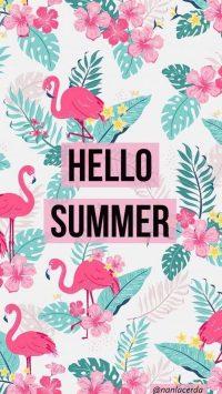 Hello Summer Wallpaper 50