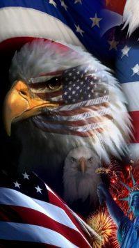 American Flag Wallpaper 8