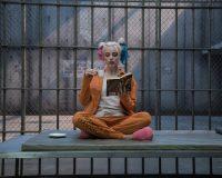 Harley Quinn Wallpaper 13
