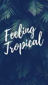 Cute Summer Wallpaper - wallpapers 21