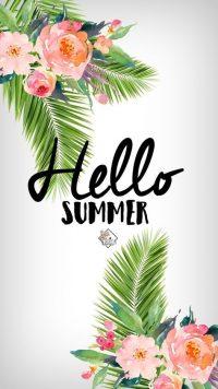 Hello Summer Wallpaper 41