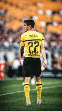 Christian Pulisic Wallpaper 29