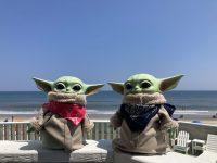 Baby Yoda Wallpaper 15