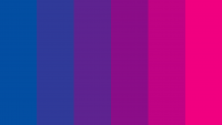 Bi Flag Wallpaper 40