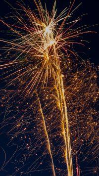Firework Wallpaper 26