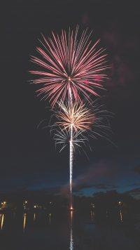 Firework Wallpaper 1