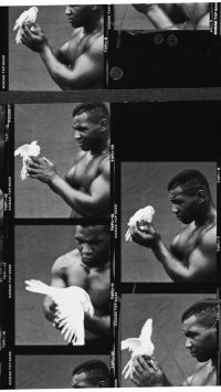 Mike Tyson Wallpaper 10