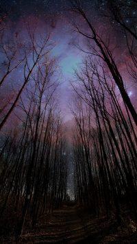 Night sky wallpaper 23
