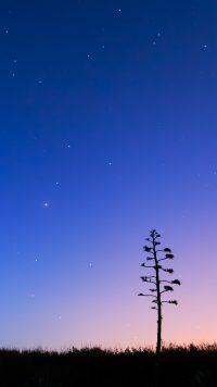 Night sky wallpaper 12