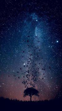 Night sky wallpaper 10