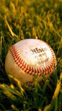 Softball Wallpaper 15