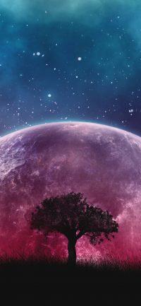 Night sky wallpaper 5