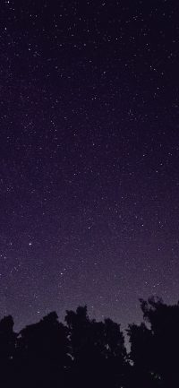 Night sky wallpaper 39