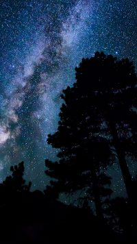Night sky wallpaper 28