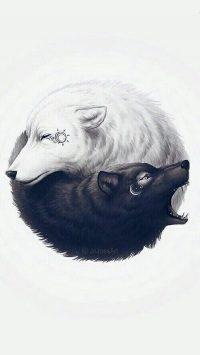 Wolf Wallpaper 45
