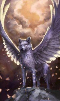 Wolf Wallpaper 48