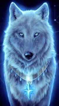 Wolf Wallpaper 10