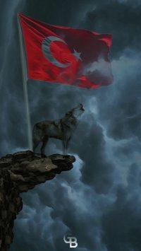 Wolf Wallpaper 36