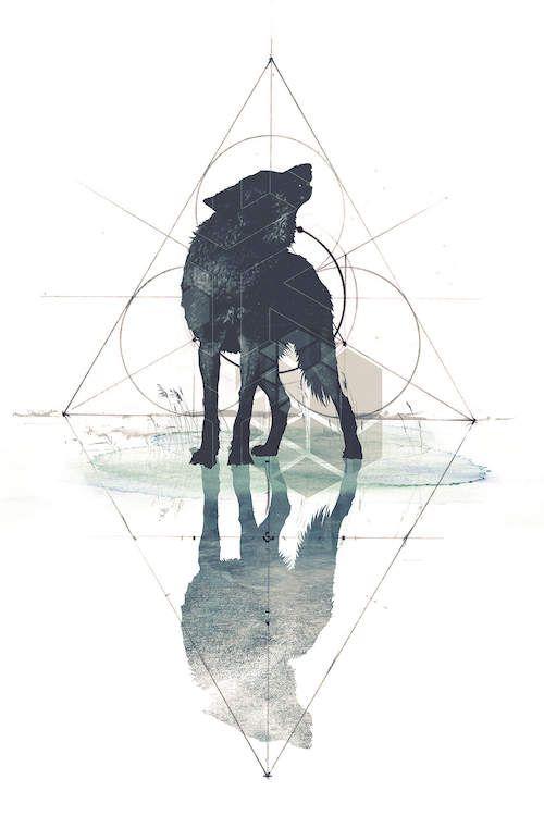 Wolf Wallpaper 1
