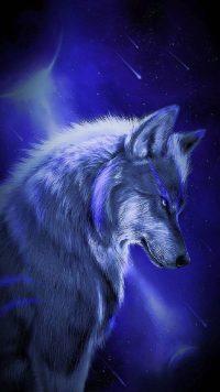 Wolf Wallpaper 17