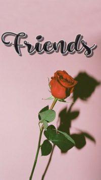 Best friend Wallpapers 44