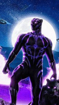 Black Panther Chadwick Boseman Wallpaper 4