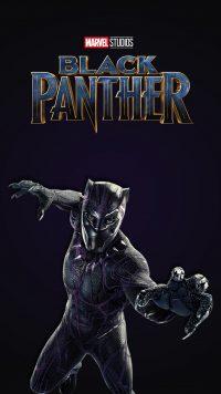 Black Panther Chadwick Boseman Wallpaper 7