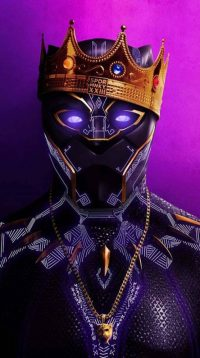 Black Panther Chadwick Boseman Wallpaper 23