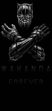 Black Panther Chadwick Boseman Wallpaper 22