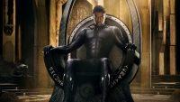 Black Panther Chadwick Boseman Wallpaper 13