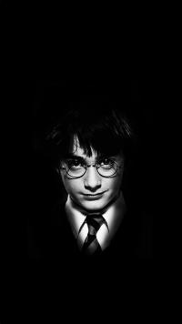 Harry Potter Wallpaper 31
