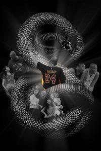 Kobe Bryant Wallpaper 39