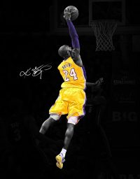Kobe Bryant Wallpaper 34