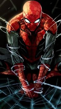 Spiderman Wallpaper 16