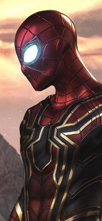 Spiderman Wallpaper 25