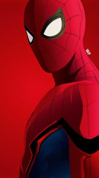 Spiderman Wallpaper 10